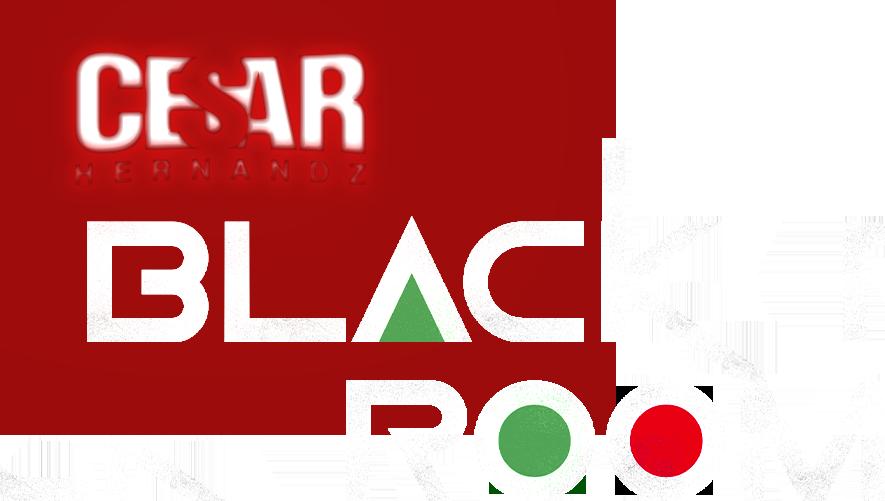 BLACK ROOM LOGO